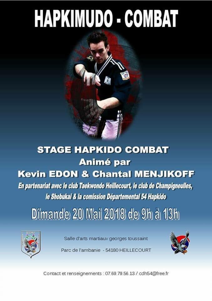 Stage hapkimudo combat